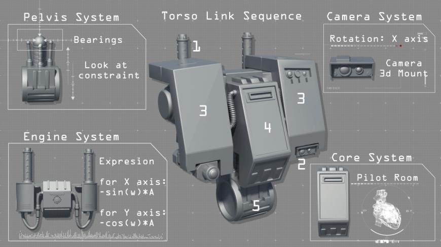 torso system image