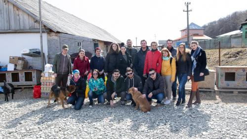 "ASSIST Software volunteers at ""Casa lui Patrocle"" Animal Rescue Shelter"