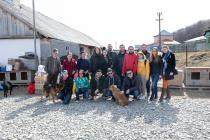 """ASSIST Software volunteers at """"Casa lui Patrocle"""" Animal Rescue Shelter"""